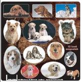 Domácí mazlíčci - Psi - Magnetky na ledničku