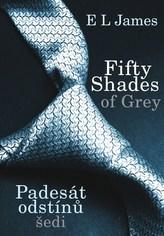 Fifty Shades of Grey : Padesát odstínů šedi