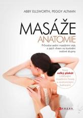 Masáže - anatomie