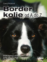 Border kolie