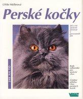 Perské kočky