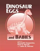 Dinosaur Eggs and Babies