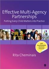 Effective Multi-Agency Partnerships