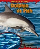 Dolphin vs Fish