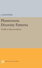 Phanerozoic Diversity Patterns