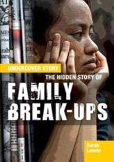The Hidden Story of Family Break-ups