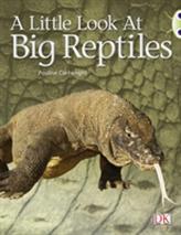 BC NF Blue (KS1) B/1B A Little Look at Big Reptiles