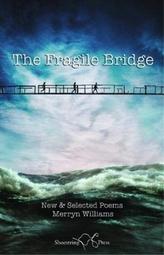The Fragile Bridge