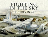 Fighting in the Sky