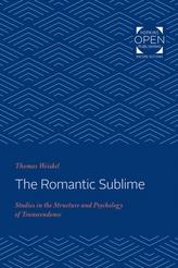 The Romantic Sublime