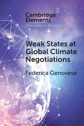 Weak States at Global Climate Negotiations