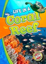 Life in a Coral Reef