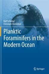 Planktic Foraminifers in the Modern Ocean