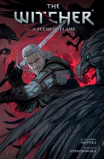 The Witcher Volume 4