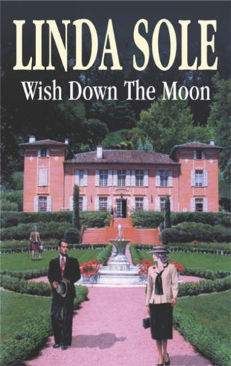 Wish Down the Moon