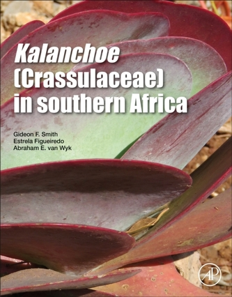 Kalanchoe (Crassulaceae) in Southern Africa