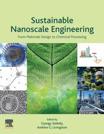 Sustainable Nanoscale Engineering