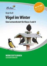 Vögel im Winter (Set)