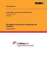Die globale Finanzkrise. Entstehung und Ursachen