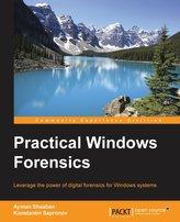 Practical Windows Forensics