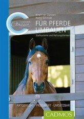 Für Pferde umbauen
