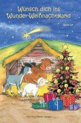 Wünsch dich ins Wunder-Weihnachtsland Band 13