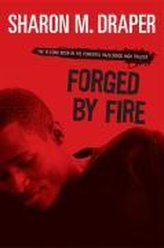 Forged by Fire, Volume 2