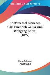 Briefwechsel Zwischen Carl Friedrich Gauss Und Wolfgang Bolyai (1899)