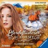 Pferdeflüsterer-Academy. Flammendes Herz