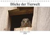 Blicke der Tierwelt (Tischkalender 2020 DIN A5 quer)
