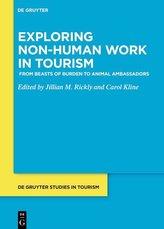 Exploring non-human work in tourism