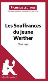 Les Souffrances du jeune Werther de Goethe (Analyse de l\'oeuvre)