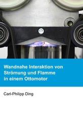 Wandnahe Interaktion von Strömung und Flamme in einem Ottomotor
