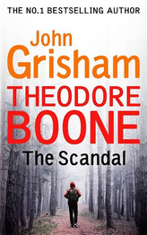 Theodore Boone The Scandal