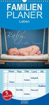 Baby - süße Träume - Familienplaner hoch (Wandkalender 2020 , 21 cm x 45 cm, hoch)