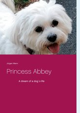 Princess Abbey