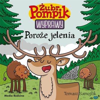 Żubr Pompik 21 Poroże jelenia
