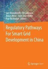 Regulatory Pathways For Smart Grid Development in China