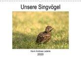 Unsere Singvögel (Wandkalender 2020 DIN A3 quer)