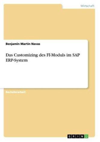 Das Customizing des FI-Moduls im SAP ERP-System