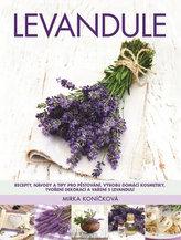 Levandule - Recepty, návody a tipy pro pěstování, výrobu domácí kosmetiky, tvoření dekorací a vaření s levandulí