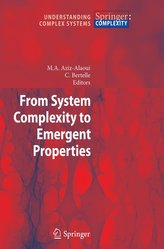 From System Complexity to Emergent Properties