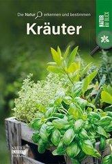 Kräuter - Die Natur erkennen und bestimmen