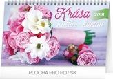 Krása květin - kvetov - stolní kalendář 2018