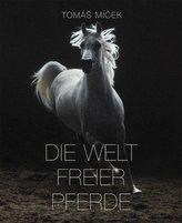 Die Welt Freier Pferde