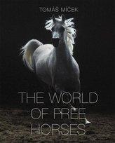 The World of Free Horses