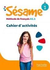 Sesame 1 ćwiczenia + online