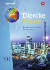 Diercke Praxis SII. Schülerband. Qualifikationsphase. Arbeits- und Lernbuch. Alle Bundesländer außer Hessen, Bayern