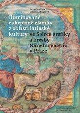 Iluminované rukopisné zlomky z oblasti latinské kultury ve Sbírce grafiky a kresby Národní galerie v Praze