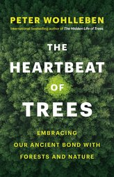 The Heartbeat of Trees